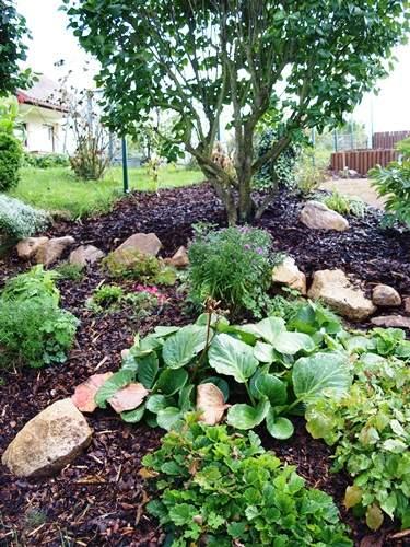 realizace zahrad 09